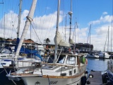 Nauticat Nauticat  33