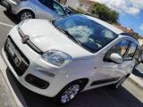 Fiat Panda Auto Lounge