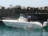Sessa Marine 6.45