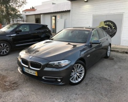 Bmw 520 luxury NACIONAL