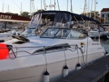 Wellcraft Excell 26 SE