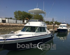 Sea Ray 290 Sport Flybridge