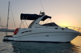Sea Ray 335 Sun Dancer