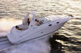 Sea Ray Sundancer 275