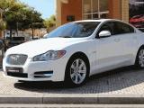 Jaguar Xf 3.0 D V6 Luxury