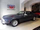 Jaguar XJS Convertible V12